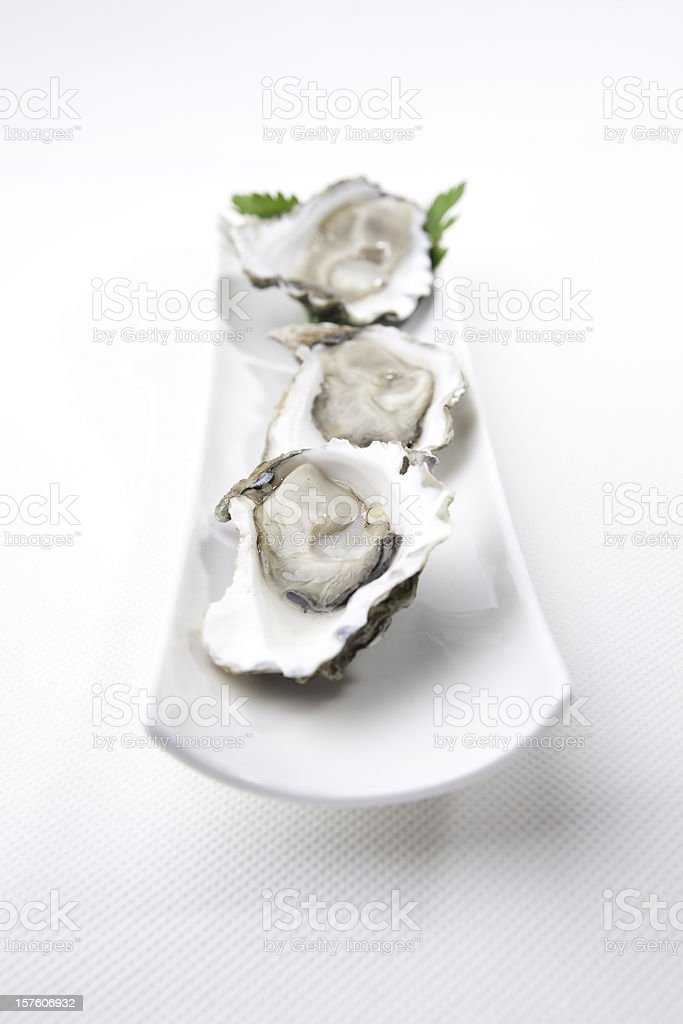 Sydney Rock Oysters on plate stock photo