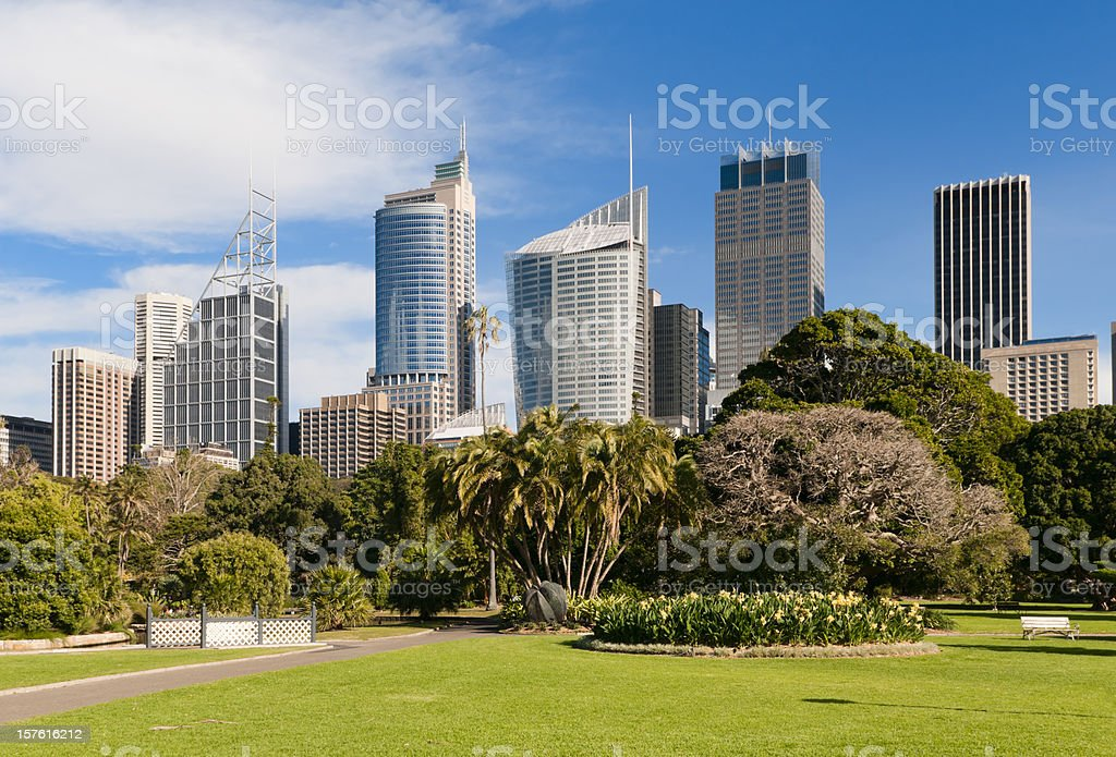 Sydney Skyline and Royal Botanic Gardens stock photo