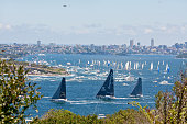 Sydney to Hobart yacht race 2013