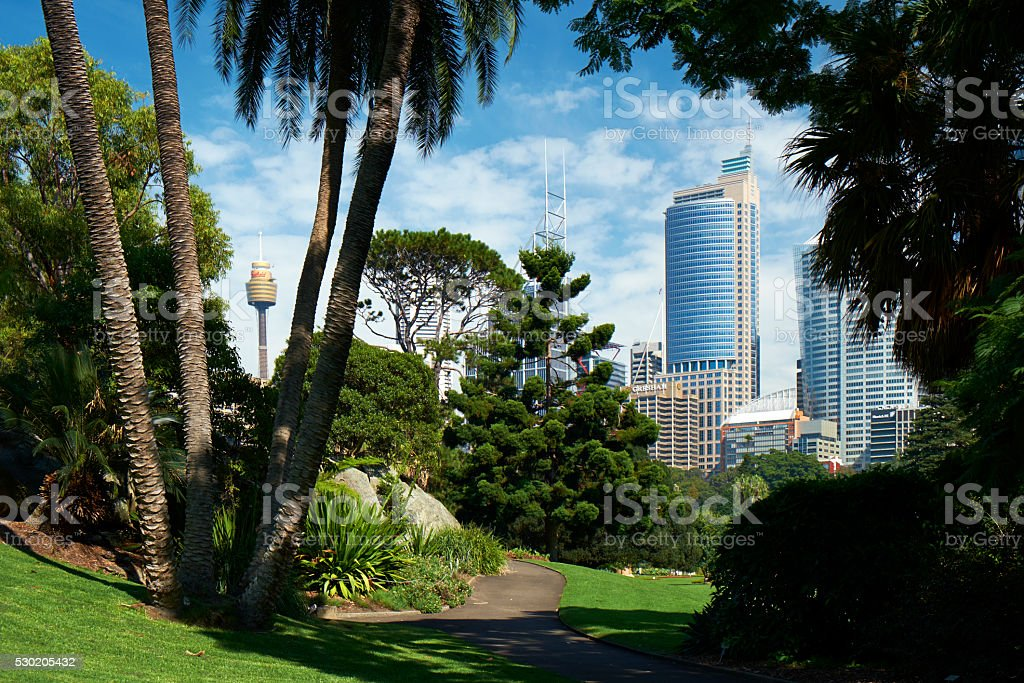 Sydney's Royal Botanic Gardens stock photo
