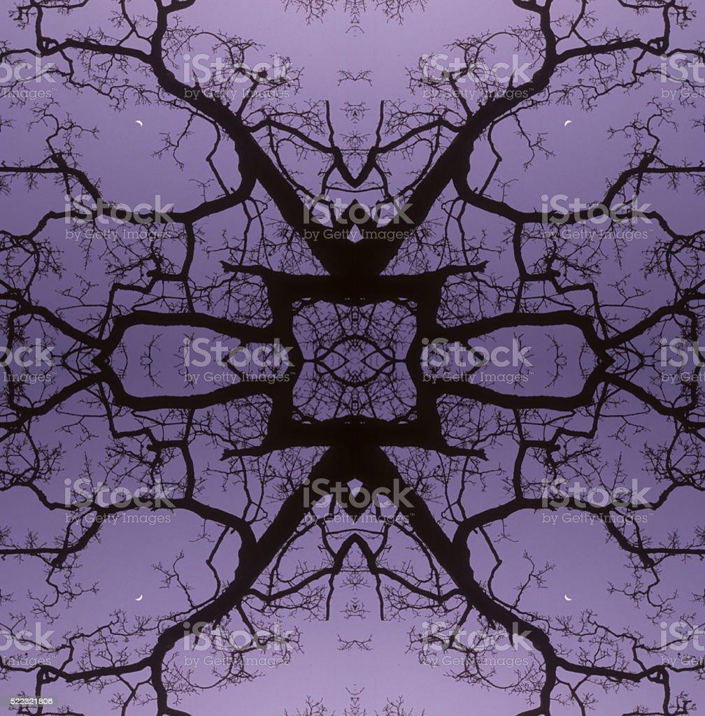 Symmetry stock photo