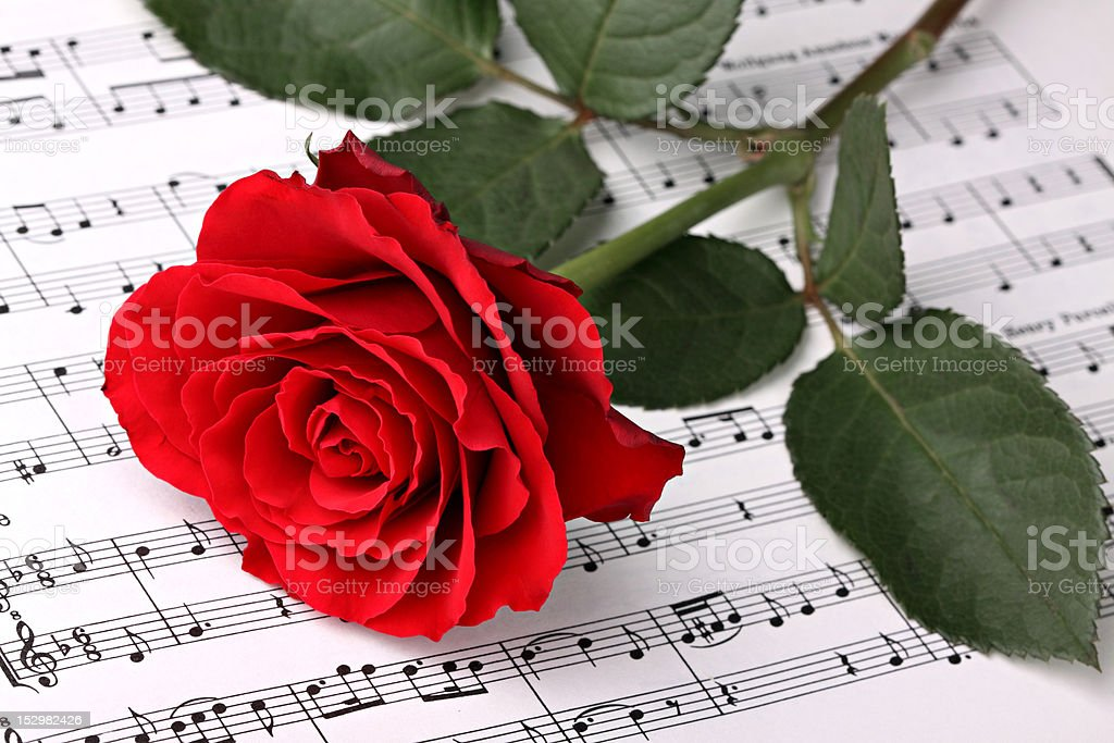 Symphony of love 2 royalty-free stock photo