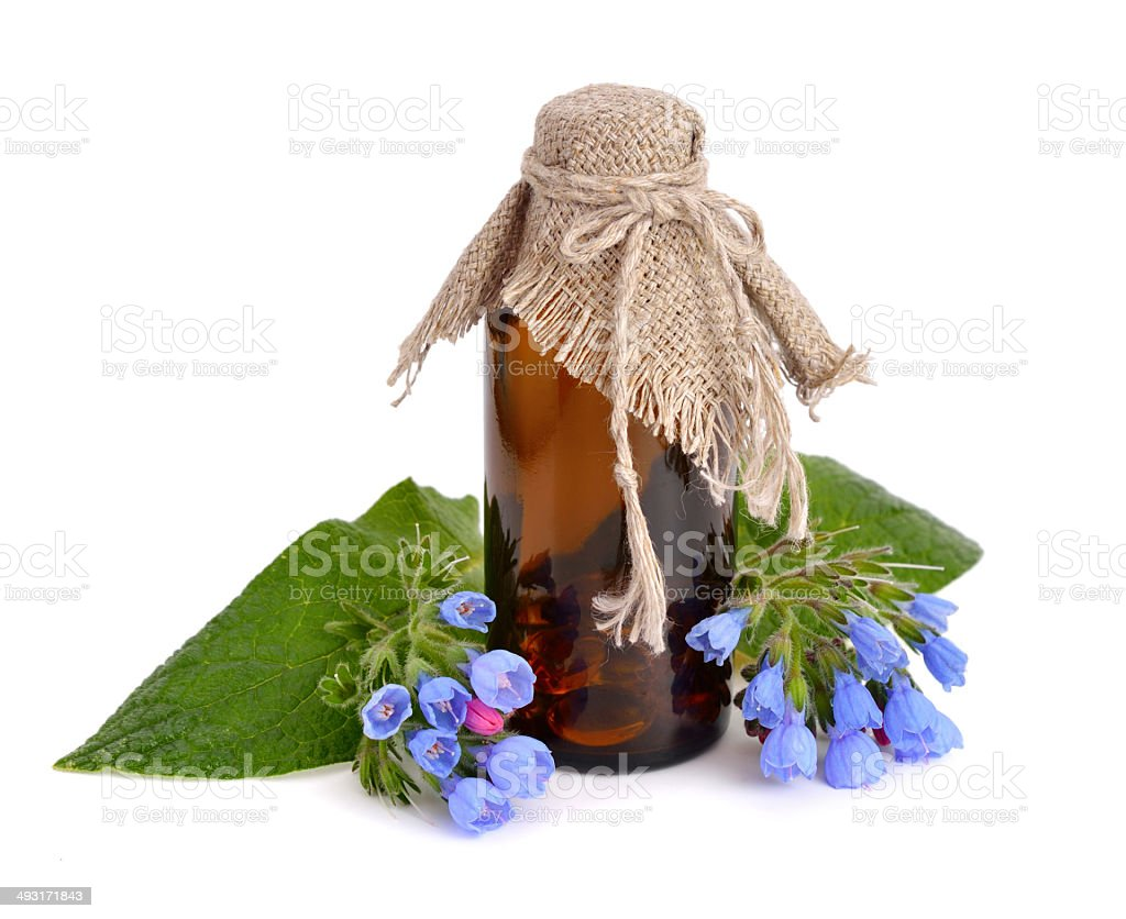 Symphytum (comfrey) with pharmaceutical bottle stock photo