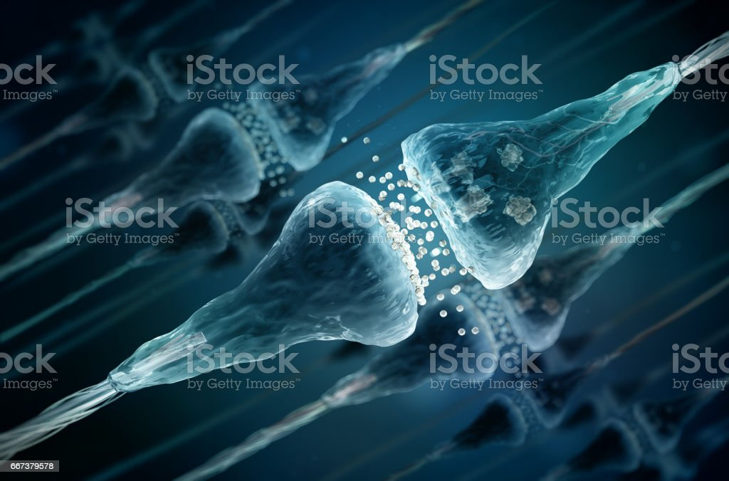 Synapse and Neuron cells sending electrical chemical signals stock photo