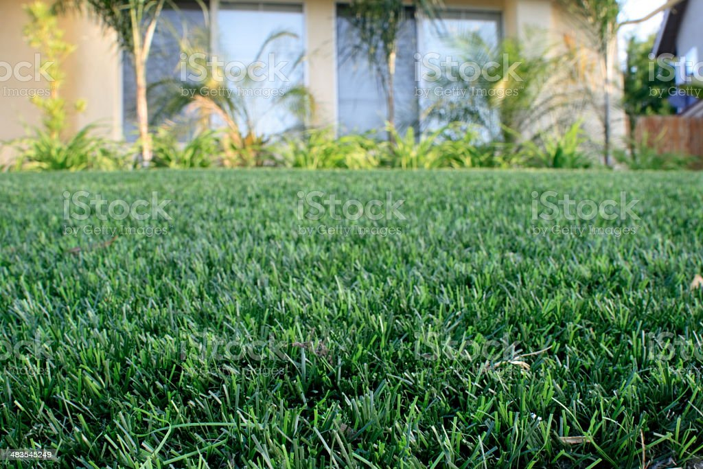 Synthetic Lawn stock photo