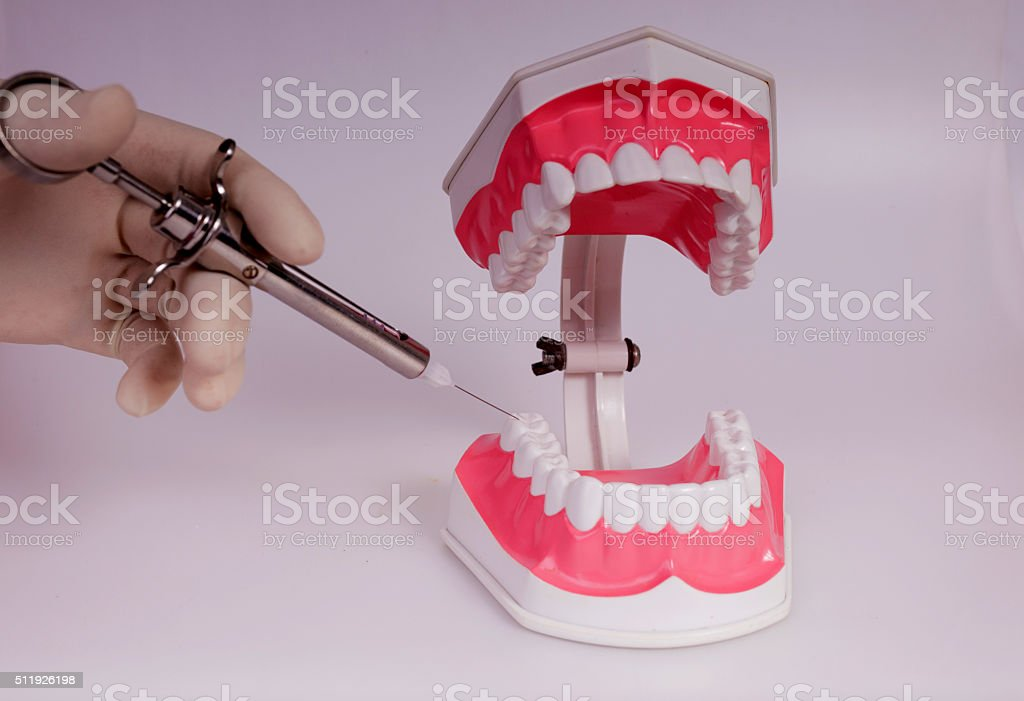 syringes and model of the teeth stock photo