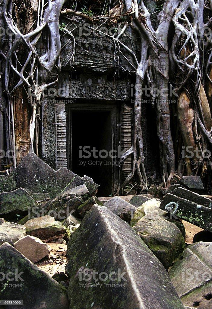 Ta Phrom 2, Angkor Wat, Cambodia stock photo