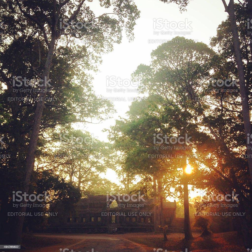 Ta Prohm. Angkor Wat stock photo