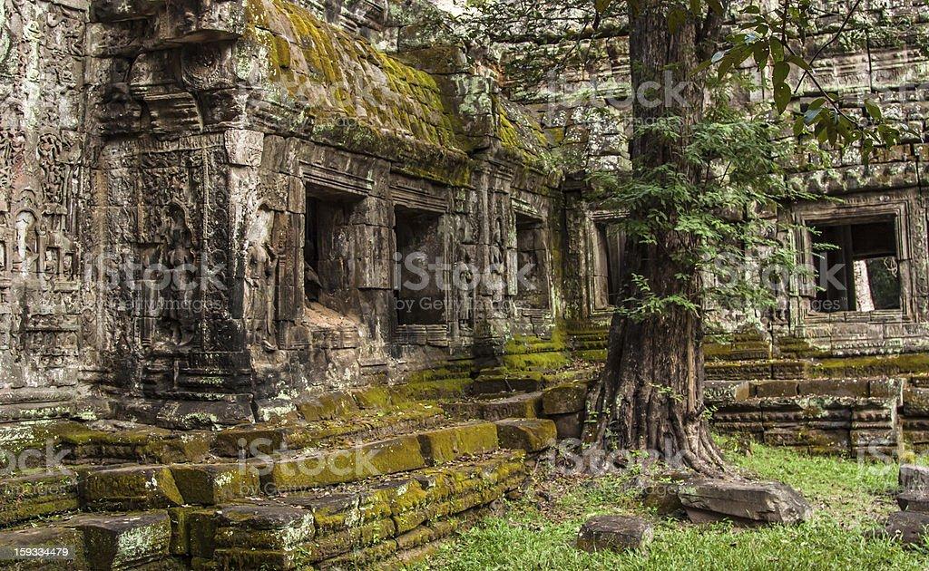 Ta Prohm, Cambodia royalty-free stock photo