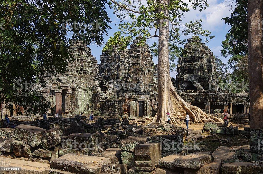 Ta Prohm temple, Angkor area, Siem Reap, Cambodia stock photo