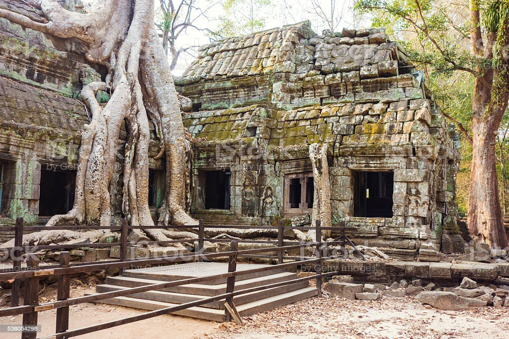 Ta Prohm Temple in Angkor Wat stock photo
