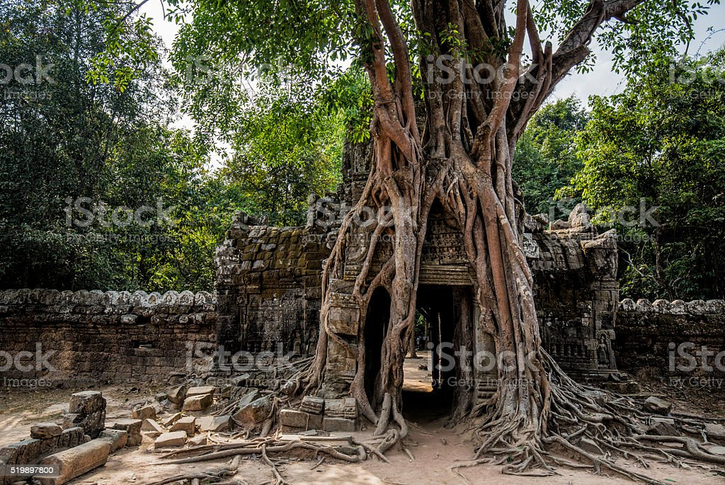 Ta Som temple Angkor Cambodia stock photo