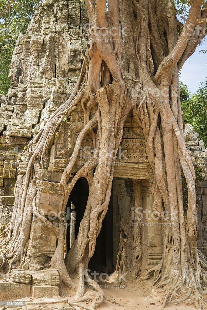 Ta Som Temple stock photo