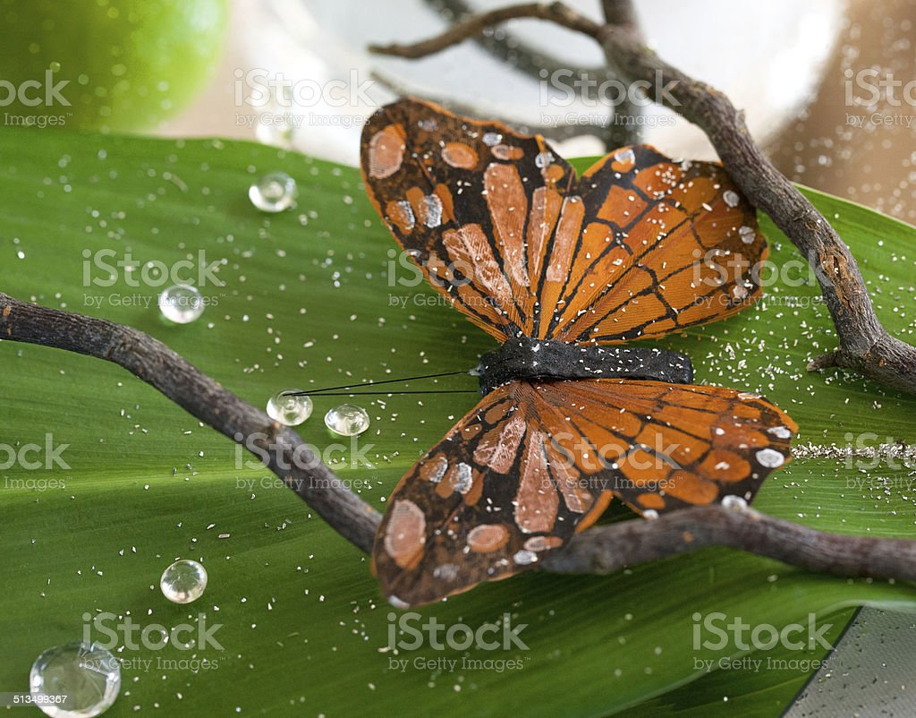 Table decoration with a butterfly royalty-free stock photo