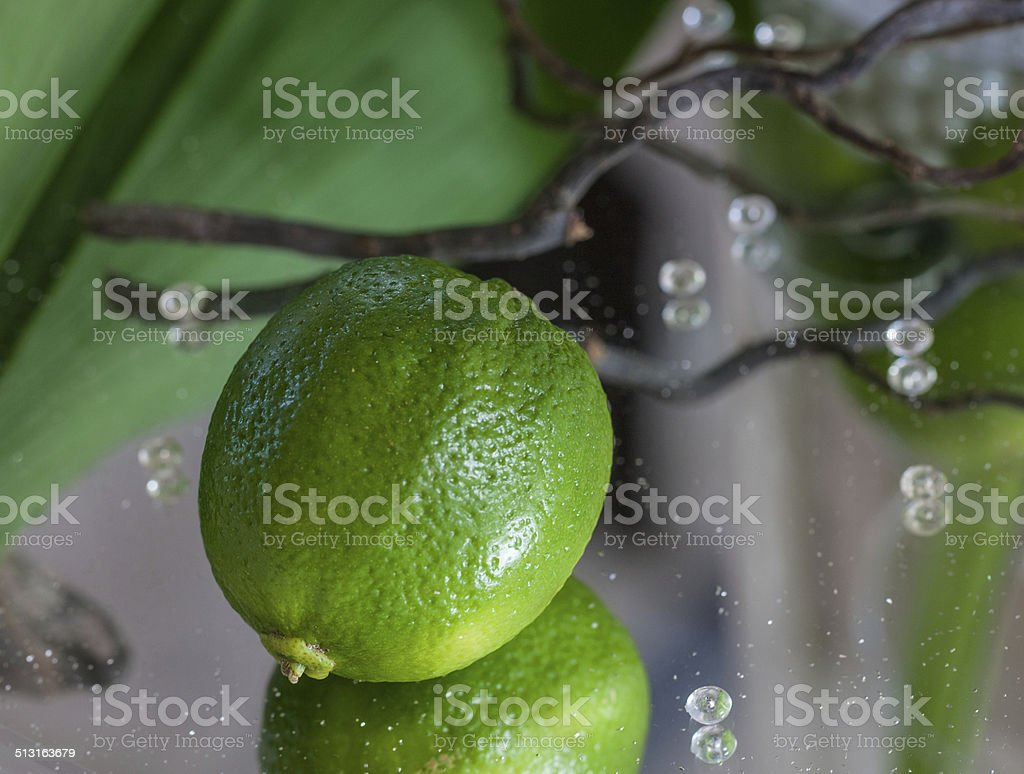 Table decoration with a lime royalty-free stock photo