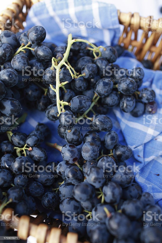 table grapes stock photo