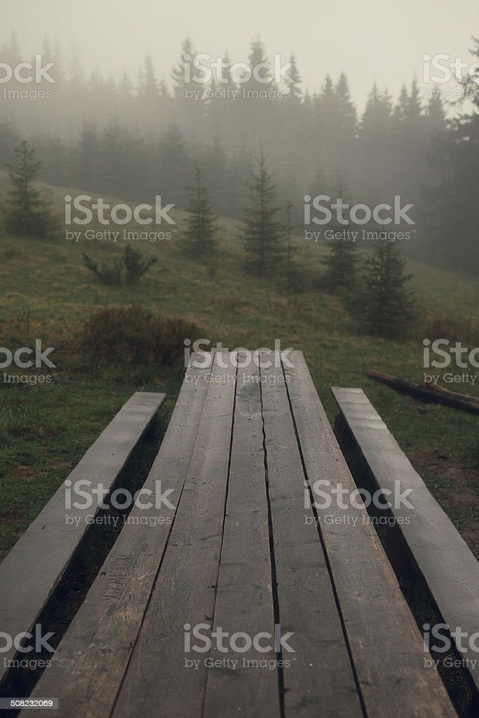 Table in forest royalty-free stock photo