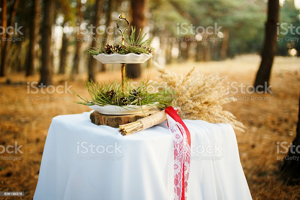 table in the pine forest stock photo