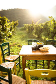 table in the vineyard with food