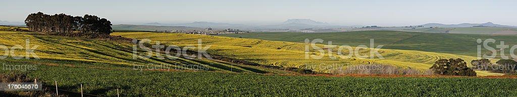 Table Mountain Panorama stock photo
