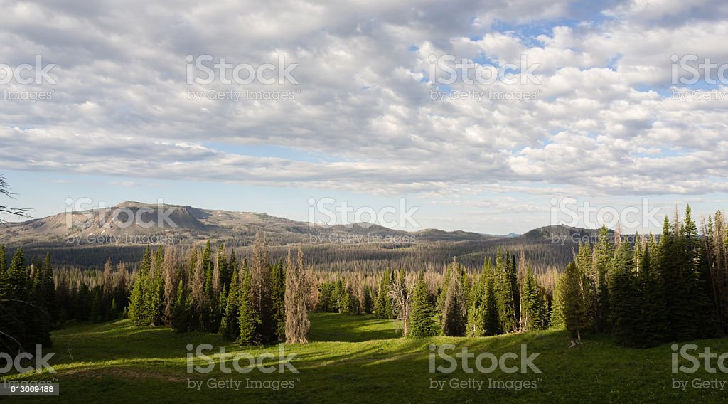 Table Mountain Wyoming Backcountry National Forest stock photo