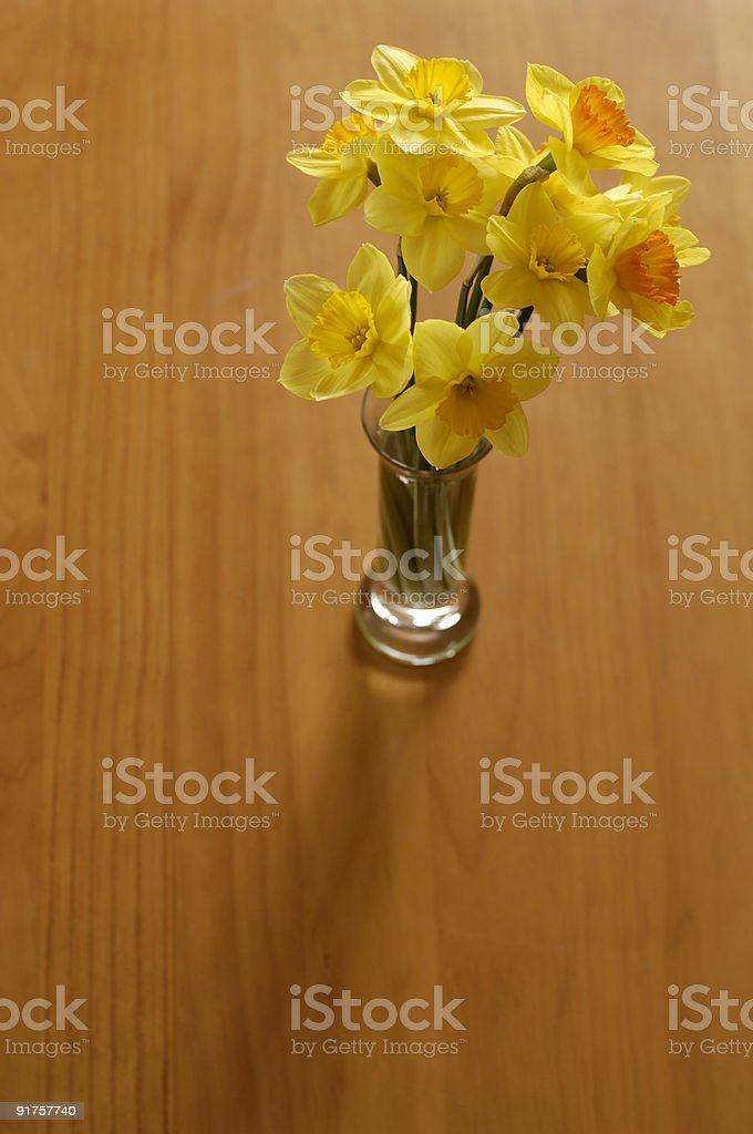 Table of Petals royalty-free stock photo