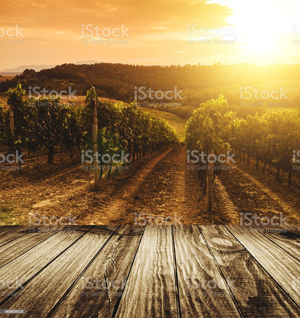 table on the vineyard landscape stock photo