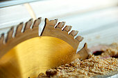 Table Saw with Fresh Wood Shavings