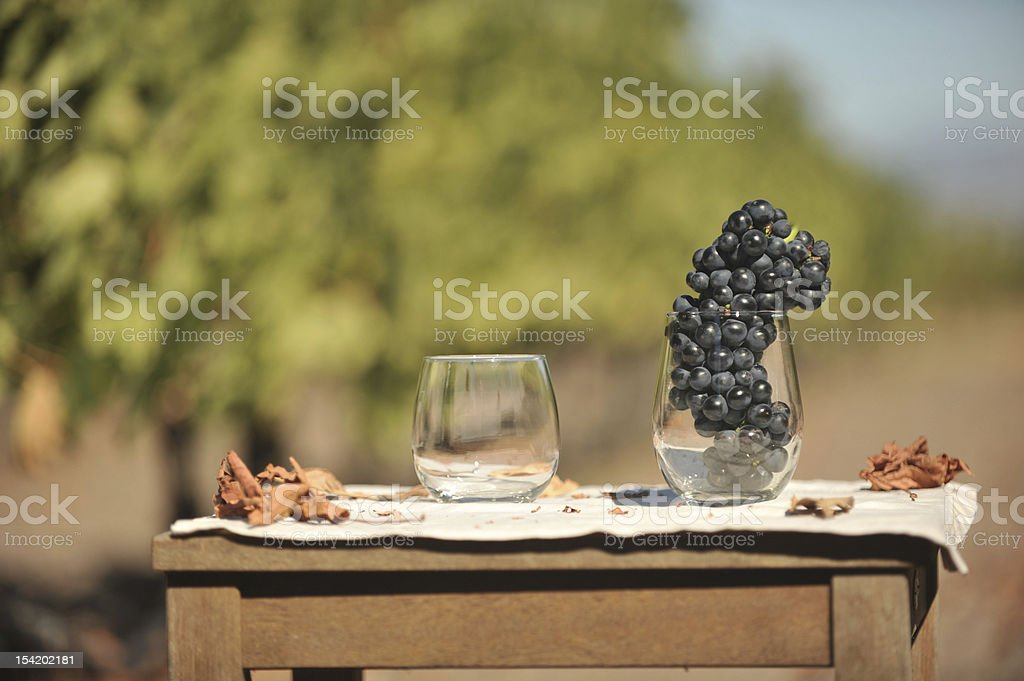 Table with two wine glasses in field royalty-free stock photo