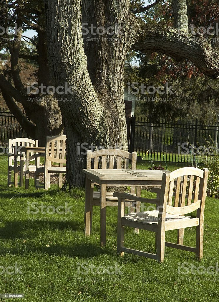 Tables Beneath The Trees stock photo
