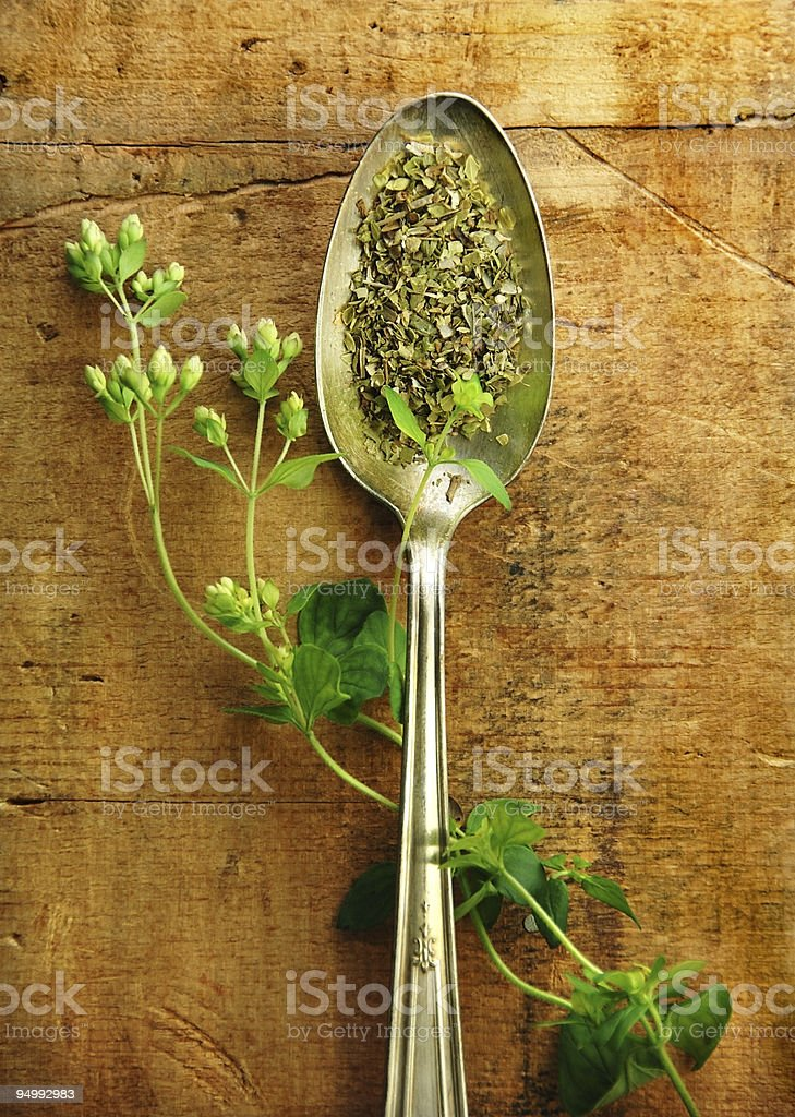 A tablespoon of dried oregano paired with a fresh sprig royalty-free stock photo