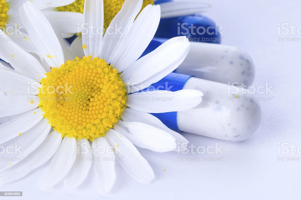Tablets and flowers royalty-free stock photo