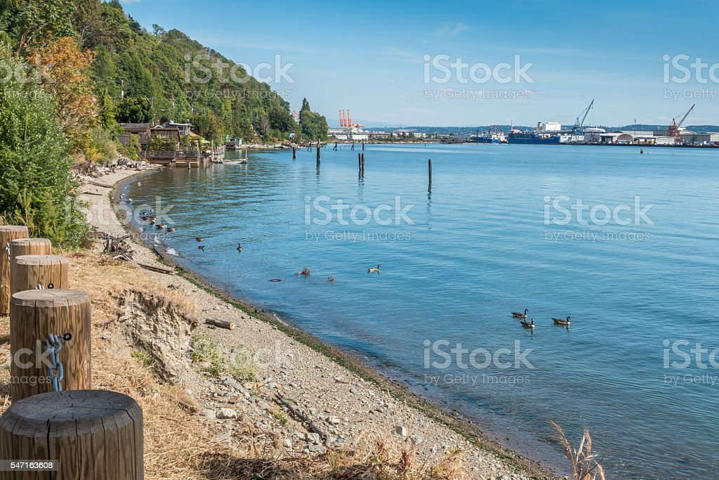 Tacoma Port Shoreline stock photo
