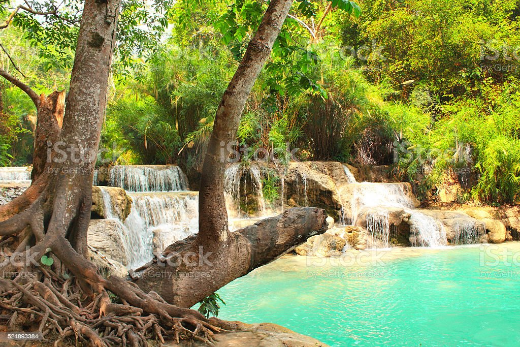 Tad Kuang Si waterfall in forest next to Luang Prabang stock photo