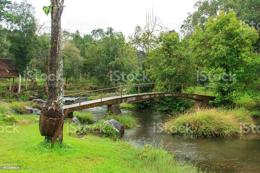 Tad Yaung waterfall, Champasak Laos stock photo