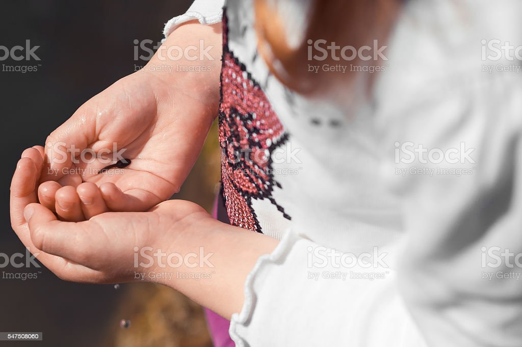 Tadpoles in a child's hands. stock photo