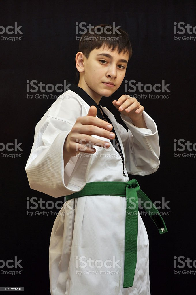 Tae Kwon Do fighter stock photo