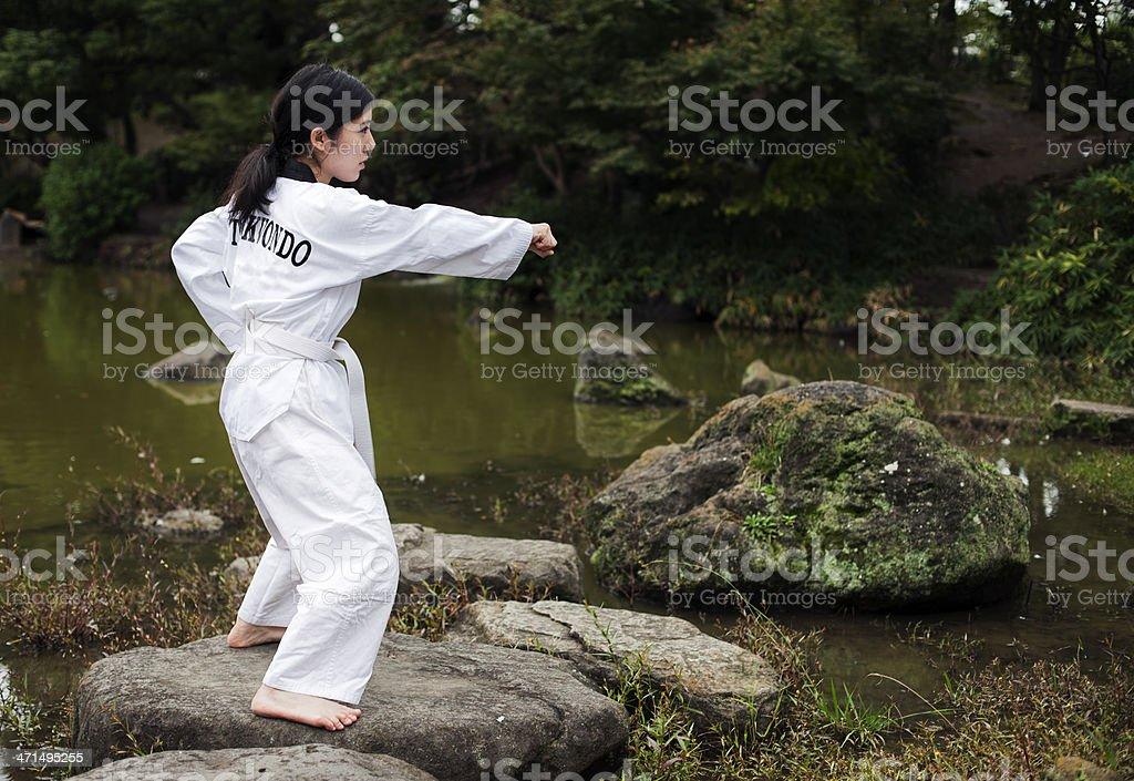 Taekwondo royalty-free stock photo