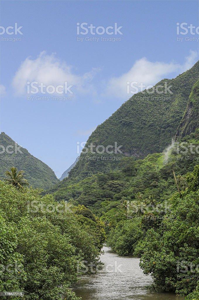 Tahitian River royalty-free stock photo