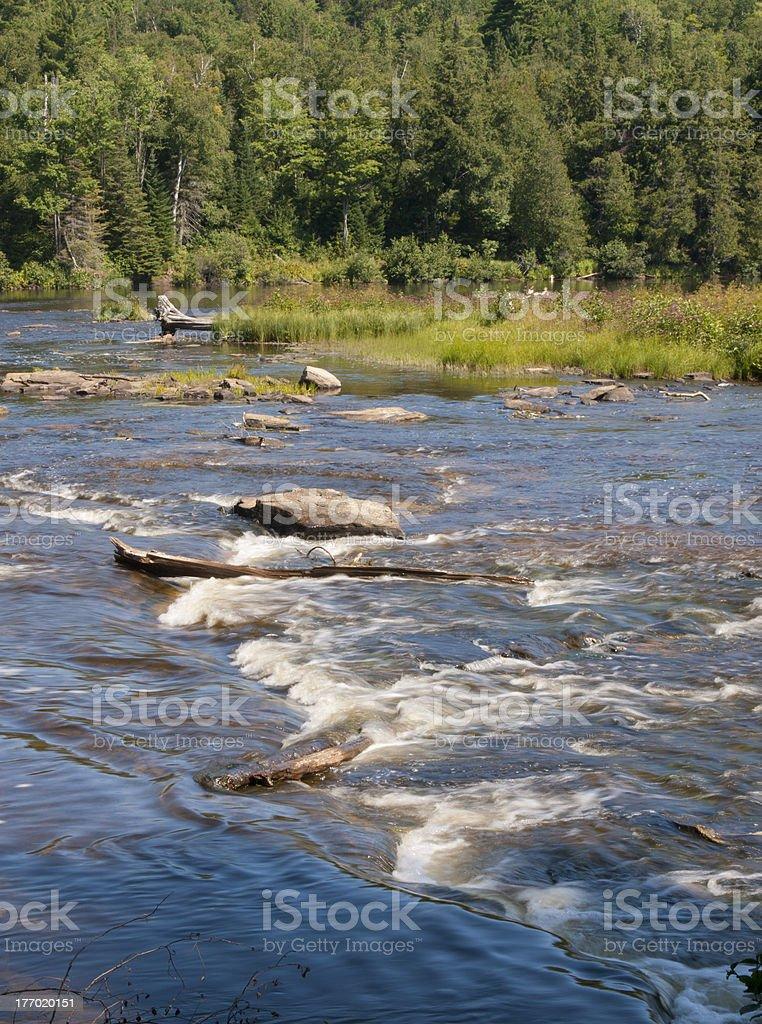 Tahquemenon River royalty-free stock photo