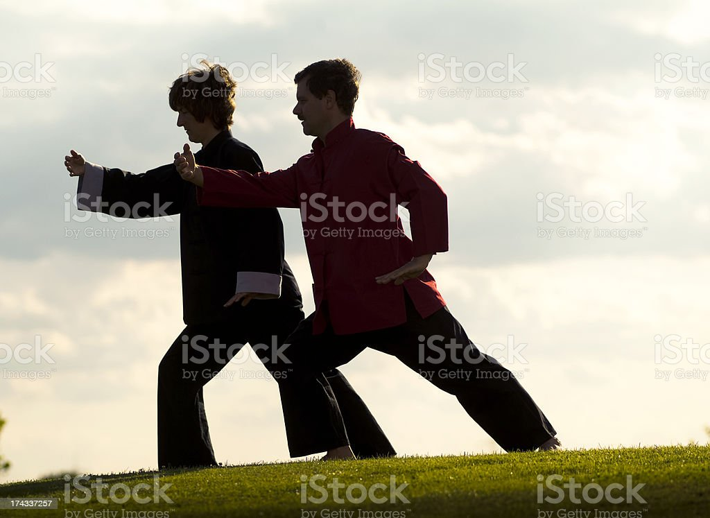 Tai Chi Group royalty-free stock photo