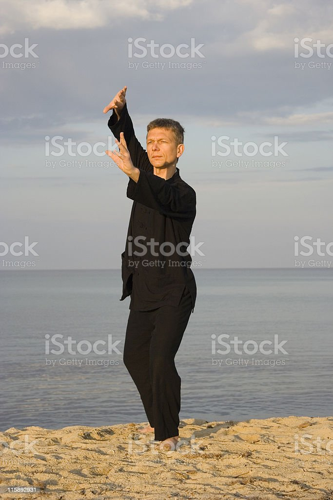 tai chi - posture fan through back royalty-free stock photo