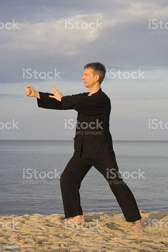 tai chi - posture punch royalty-free stock photo
