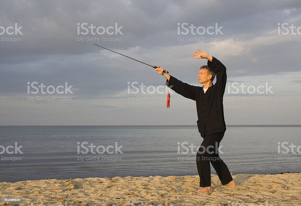 tai chi - posture swallow searches the water royalty-free stock photo