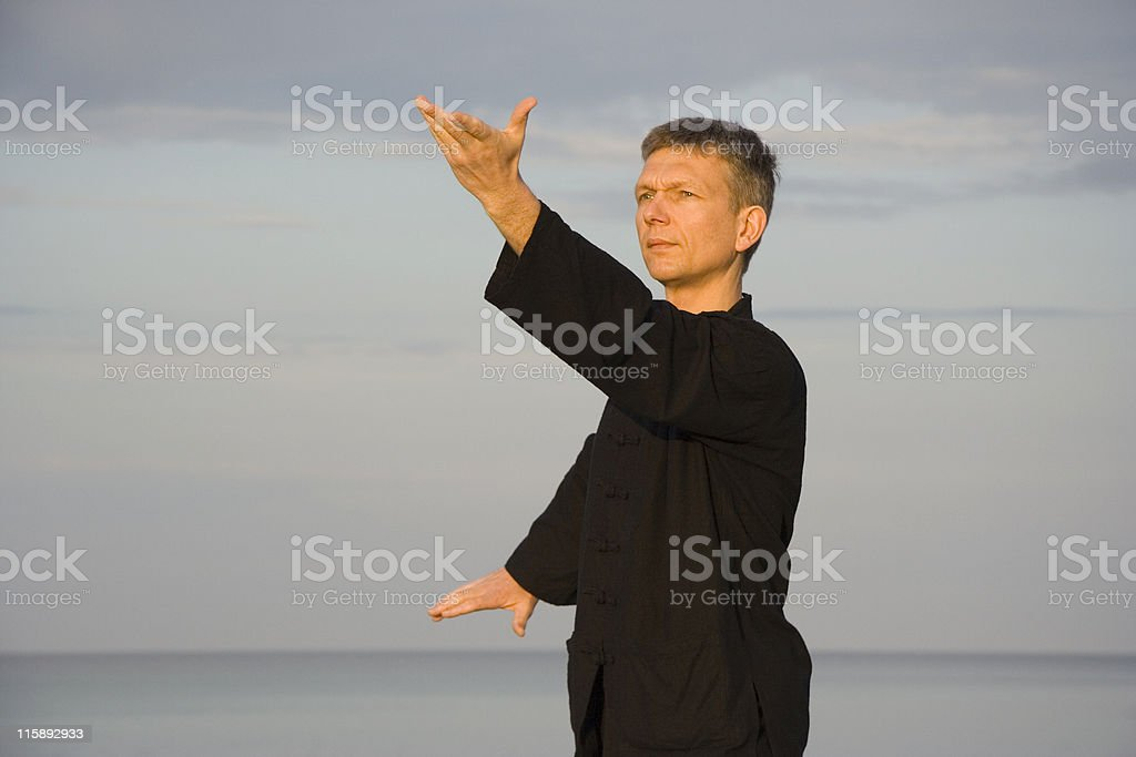 tai chi - posture wild horse parts mane left royalty-free stock photo