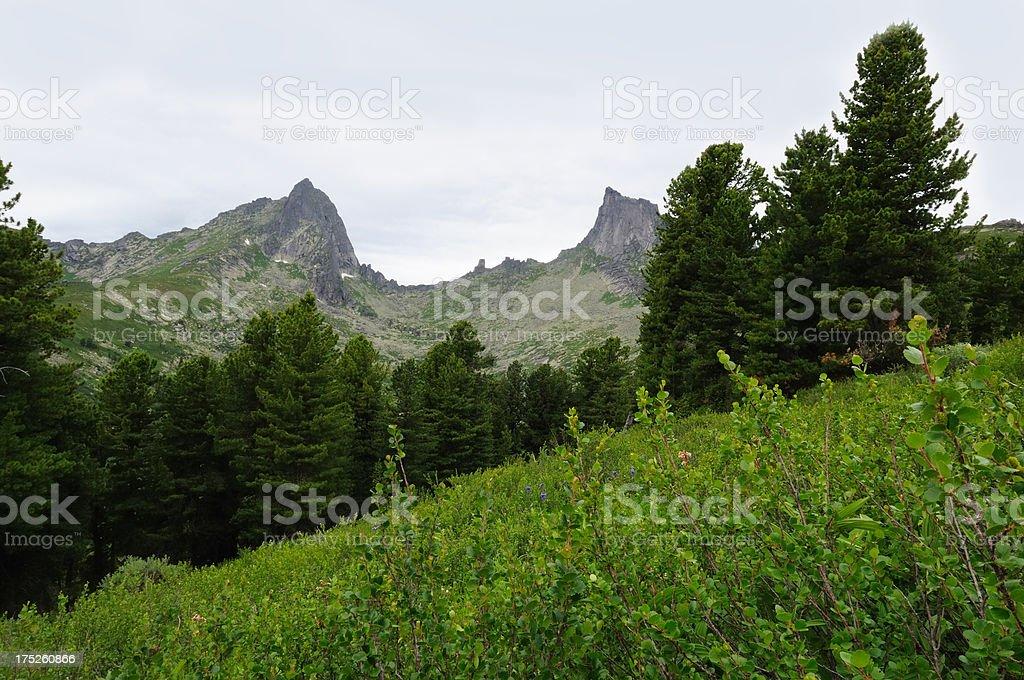 Taiga and Sayan mountains. stock photo