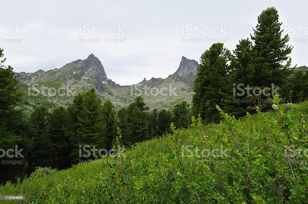 Taiga and Sayan mountains. stock photo