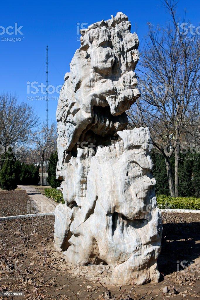 Taihu stone (porous stone) stock photo