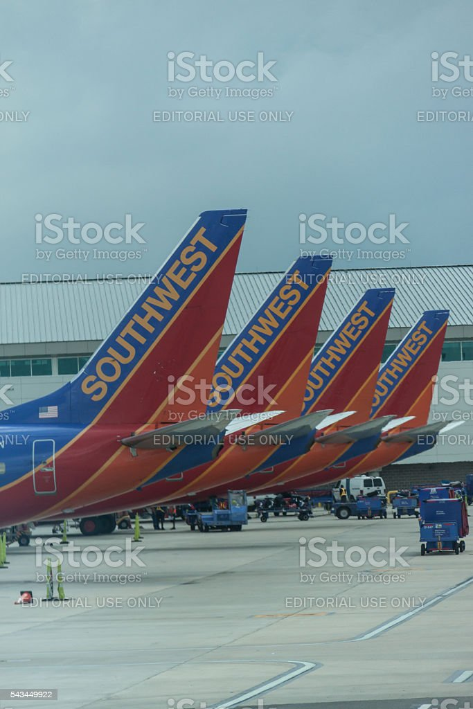 Tails stock photo