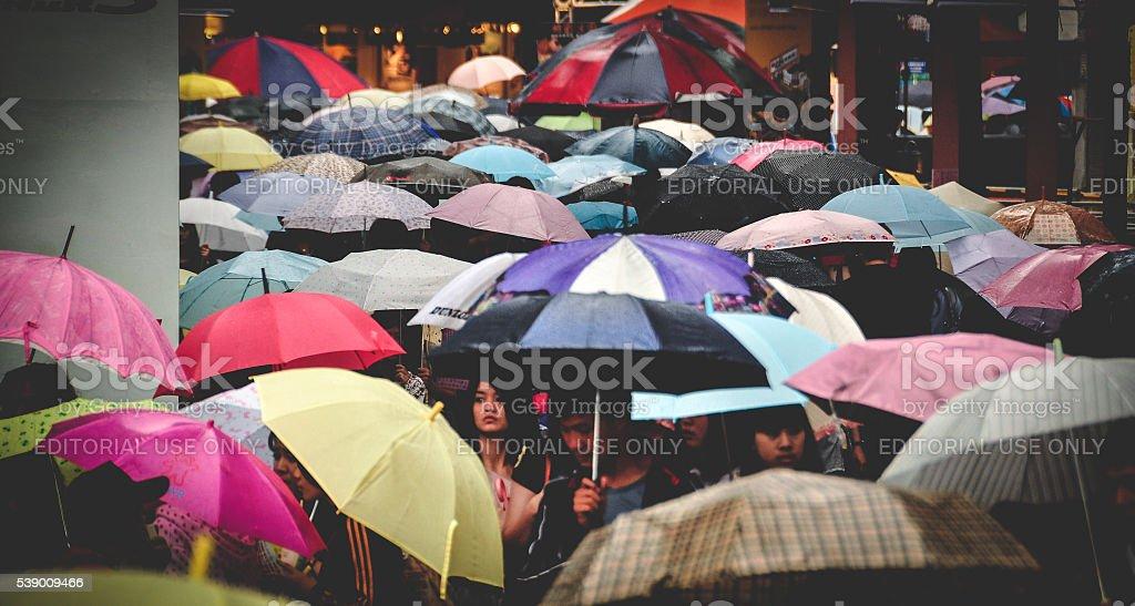 Taipei city umbrellas stock photo
